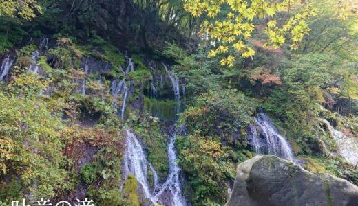 【吐竜の滝】人が少ない朝方がおすすめ!マイナスイオンを超えた清涼感で癒される静かな滝