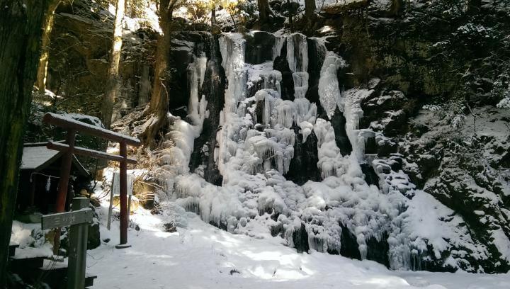 冬季の母の白滝
