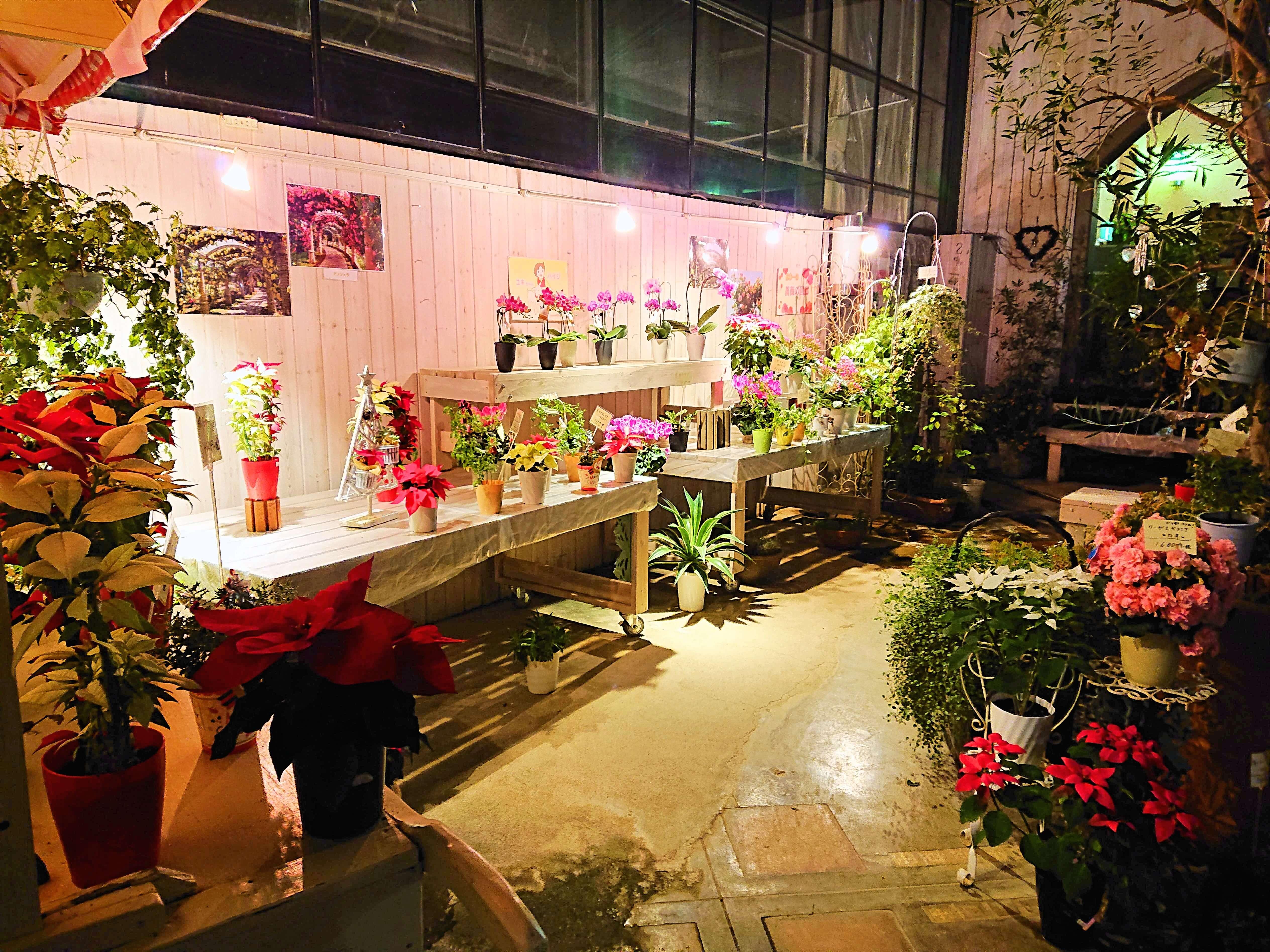 ハイジの村バラの温室