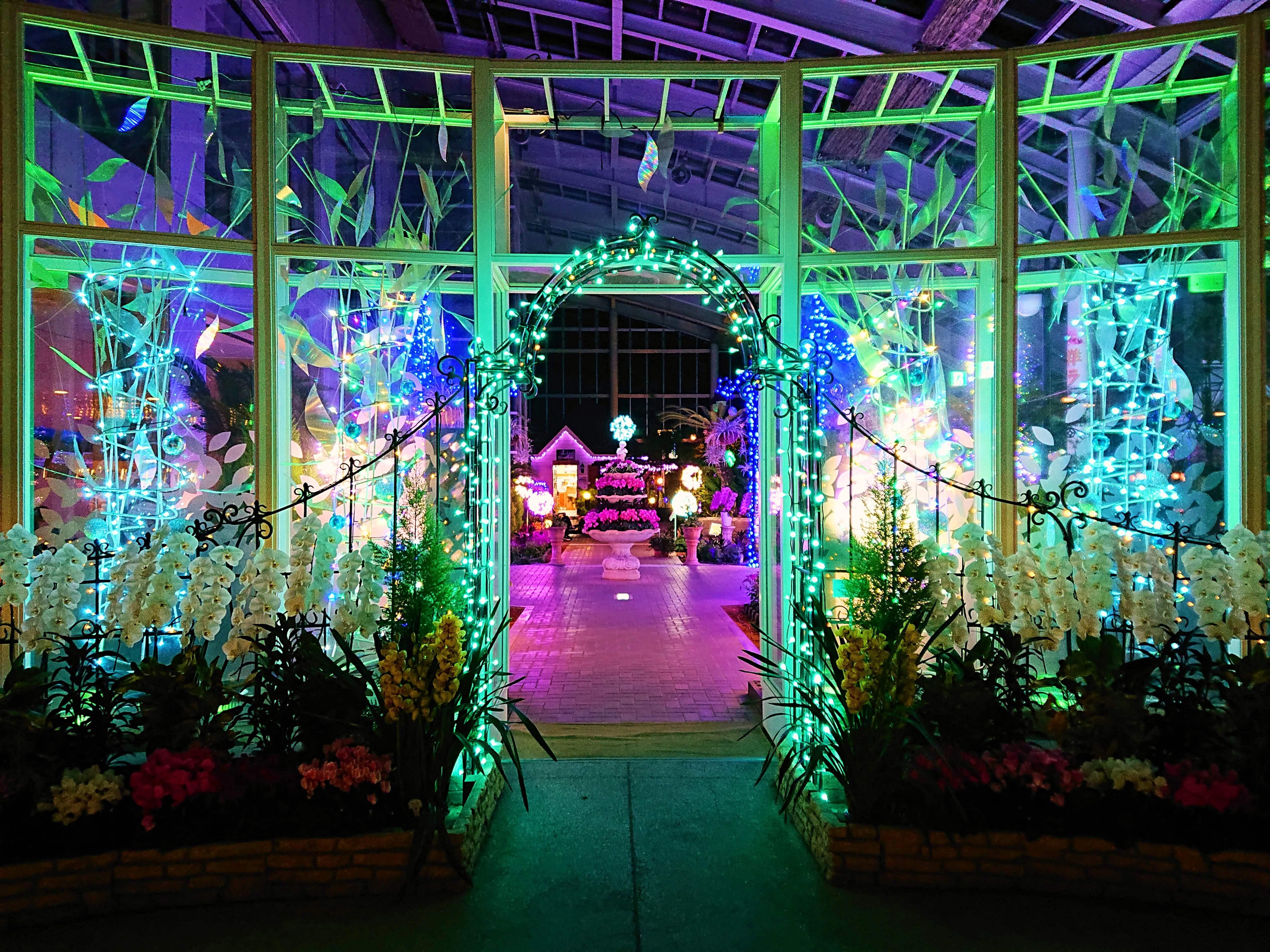 山中湖花の都公園温室入り口のイルミネーション