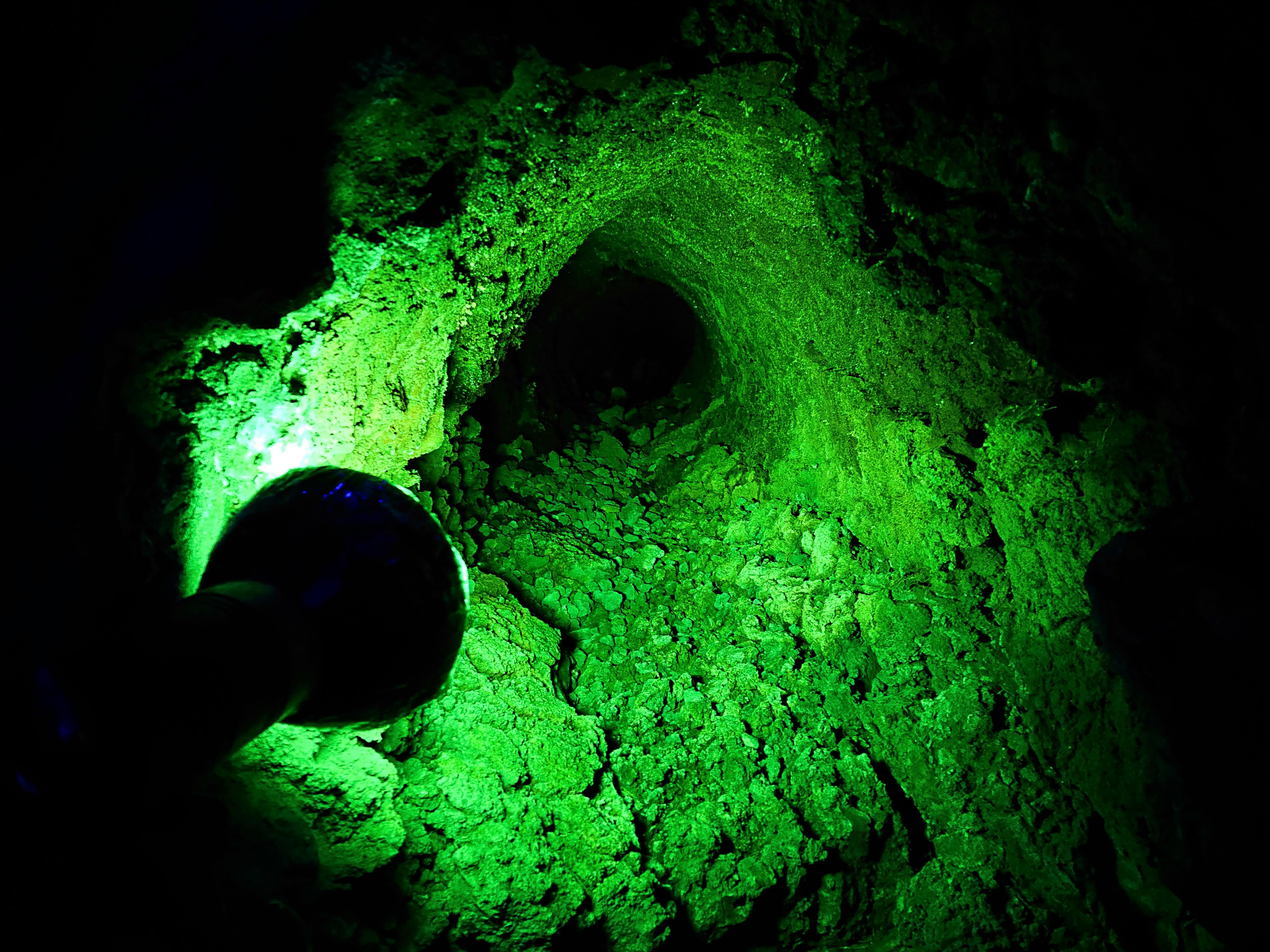 溶岩樹型のライトアップ