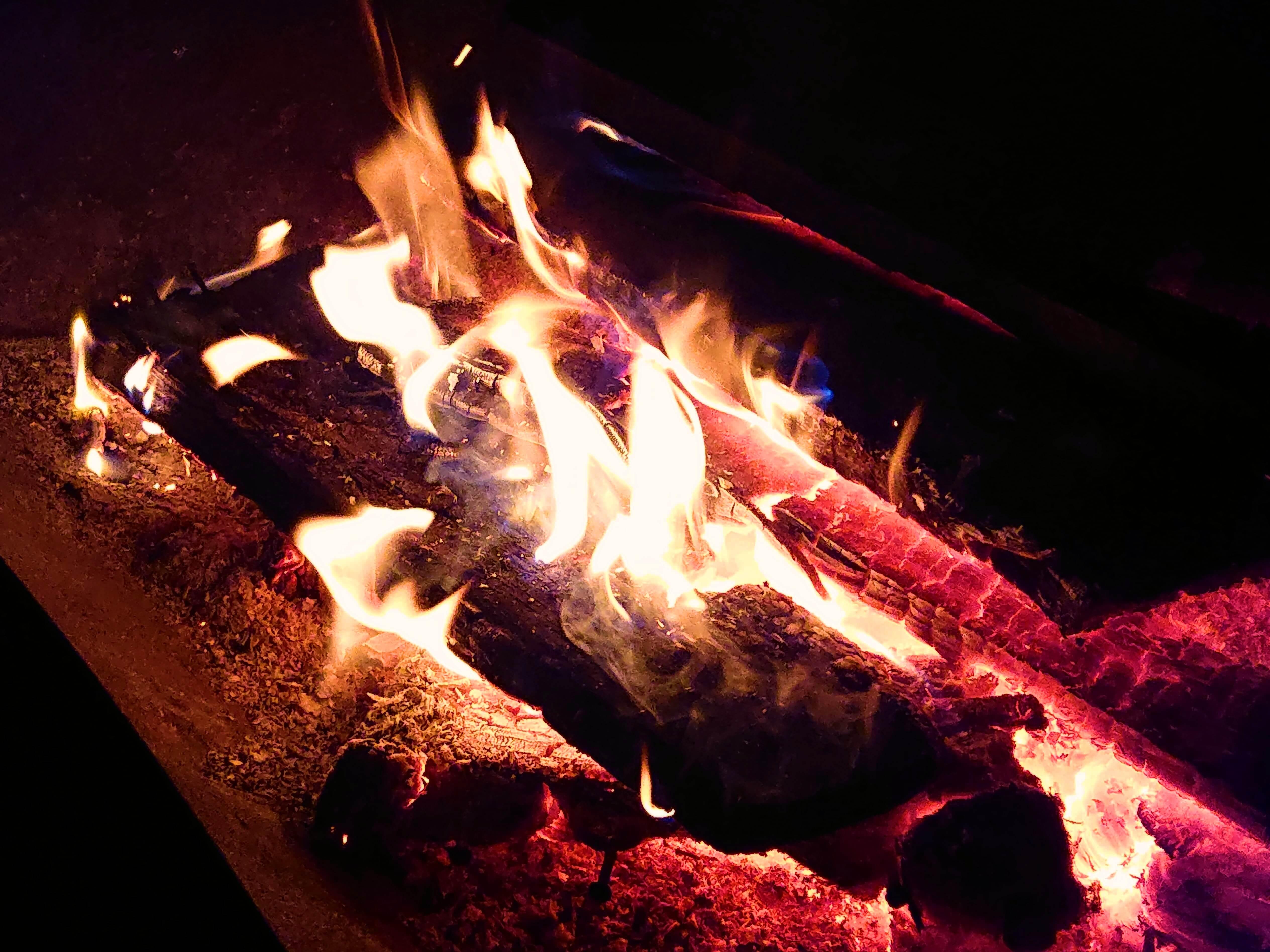 焚き火の揺れる炎