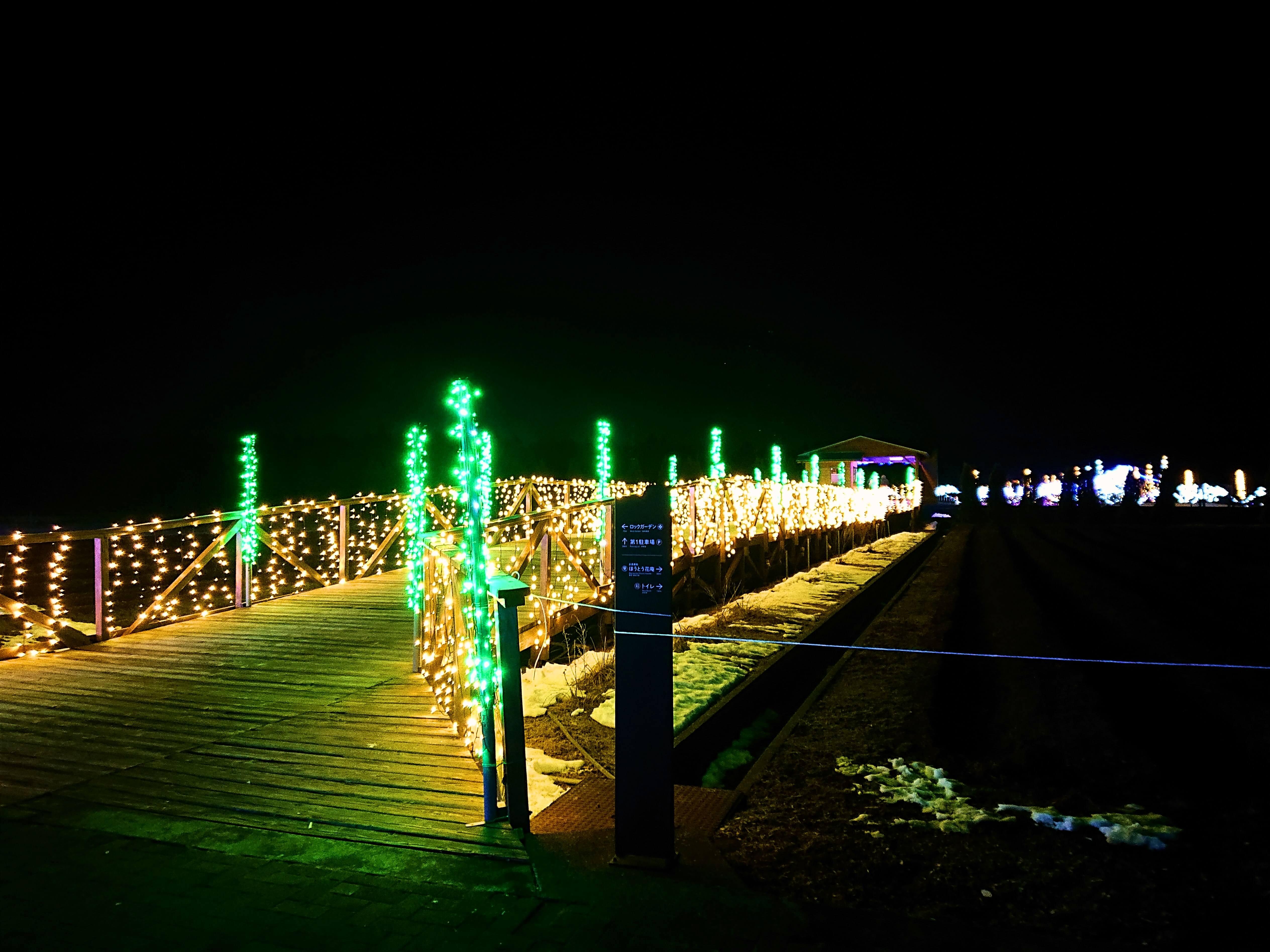 花の都公園入り口の橋に飾られたイルミネーション