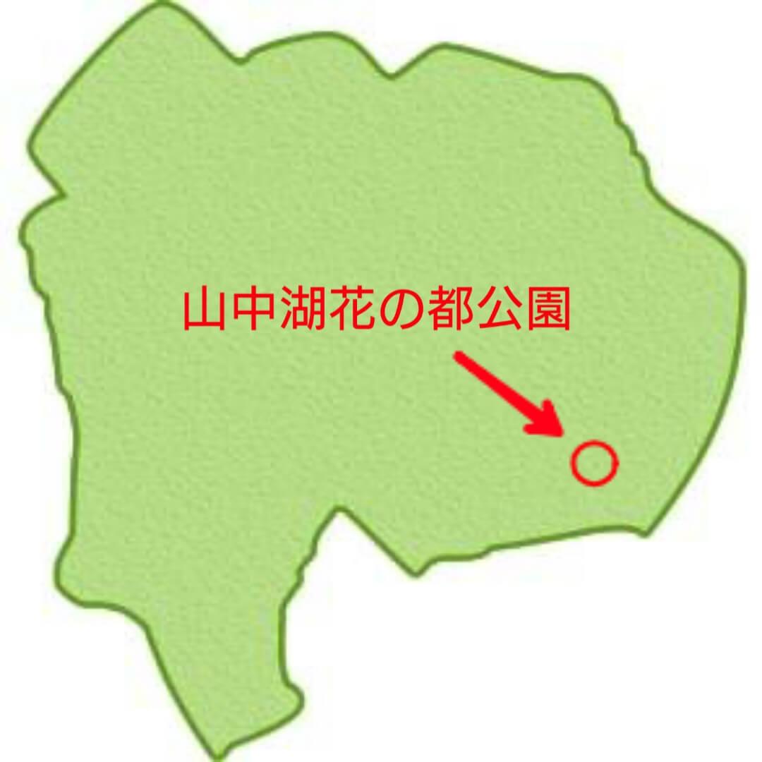 山中湖花の都公園の場所