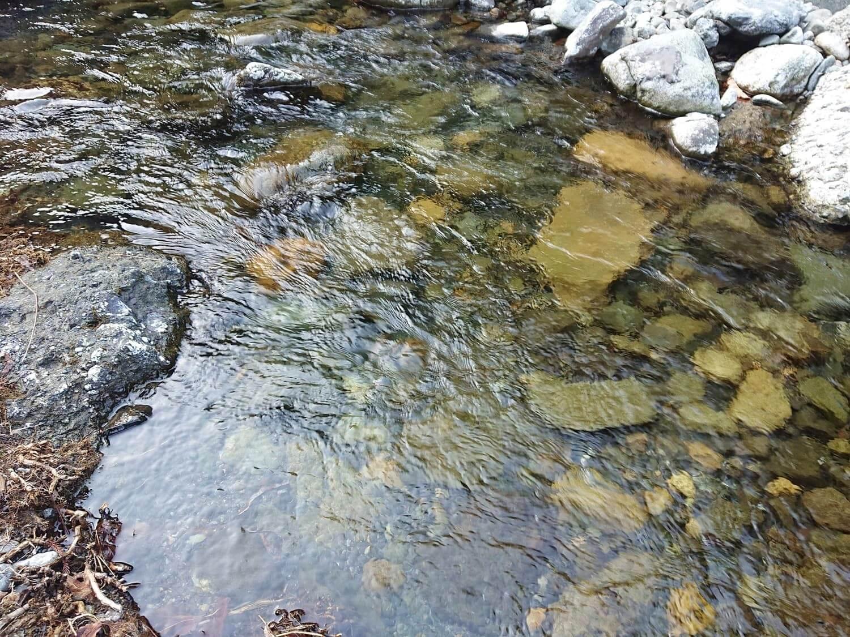 水の透明度