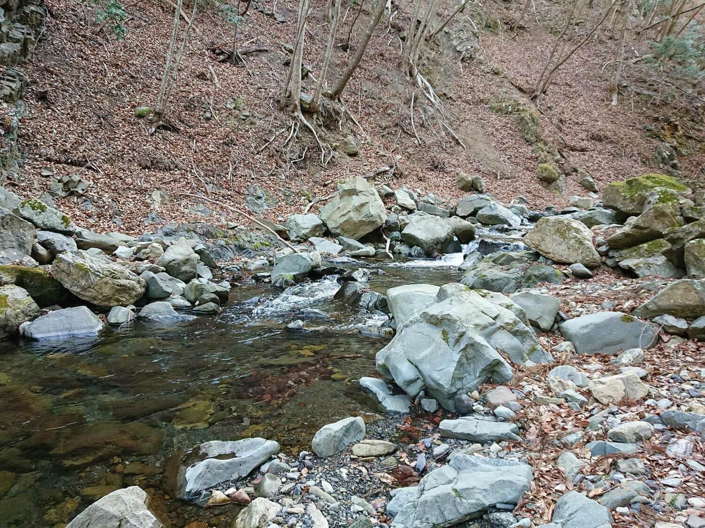 根子川の雰囲気