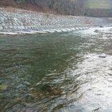 丹波川の渓流