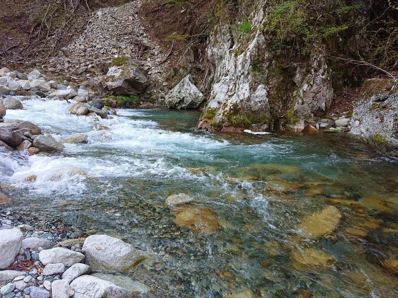 上流域付近の河川状況