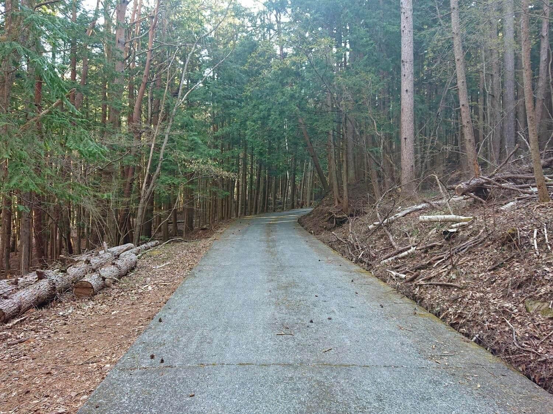 源流域への山道