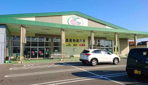 【たべるじゃんやまなし】激安の新鮮野菜ここにあり!直売所で山梨の味覚を堪能しよう!
