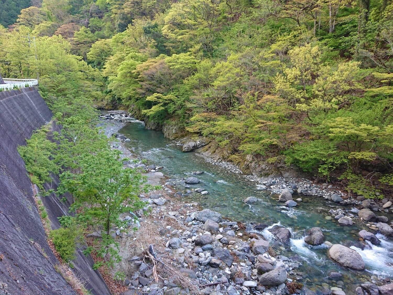 中流域の河川状況
