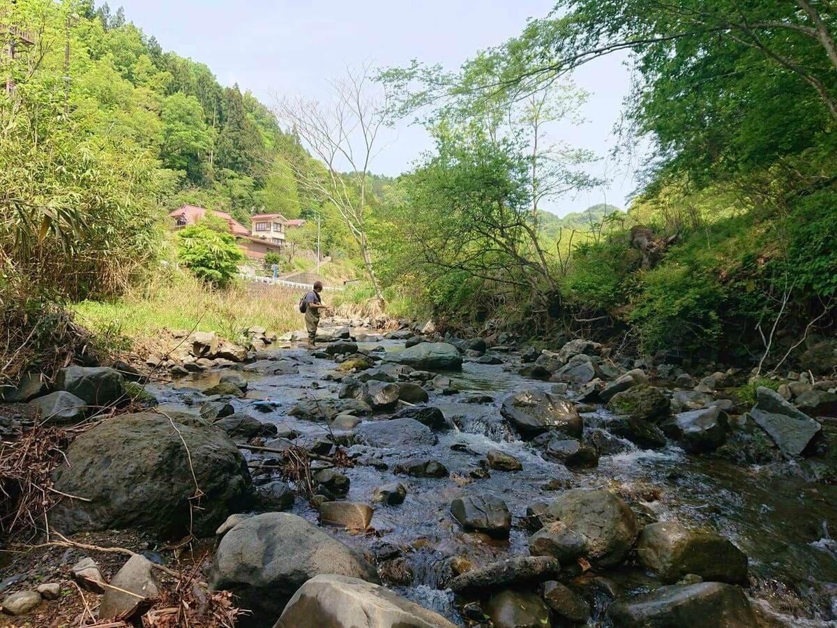 樋田川の様子