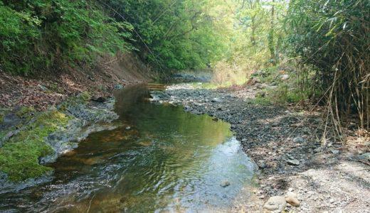 【樋田川】入渓ポイントが少なく短い河川!四尾連湖へ続く道の水質を大調査!