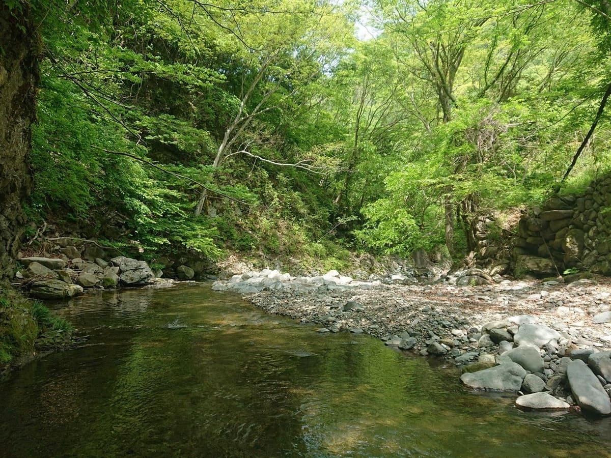 樋田川の景観