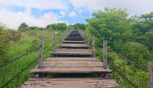 【美しの森】清里の自然を一望できる大パノラマ!澄んだ空気で気分をリフレッシュ