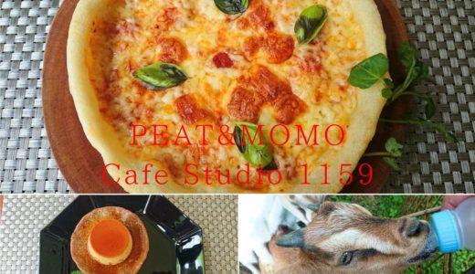 【PEAT&MOMO】超かわいい子ヤギたちと触れ合える山カフェ!おしゃれでおいしい料理に大満足