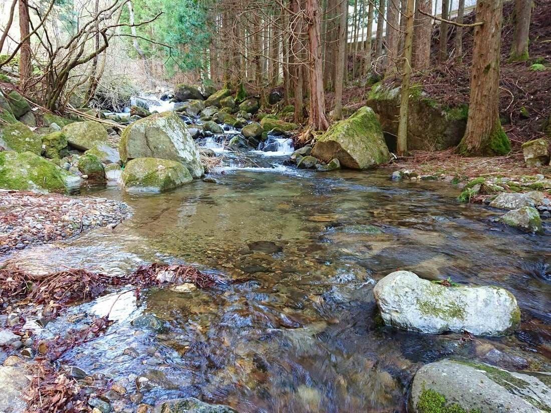 鼓川の水の透明度
