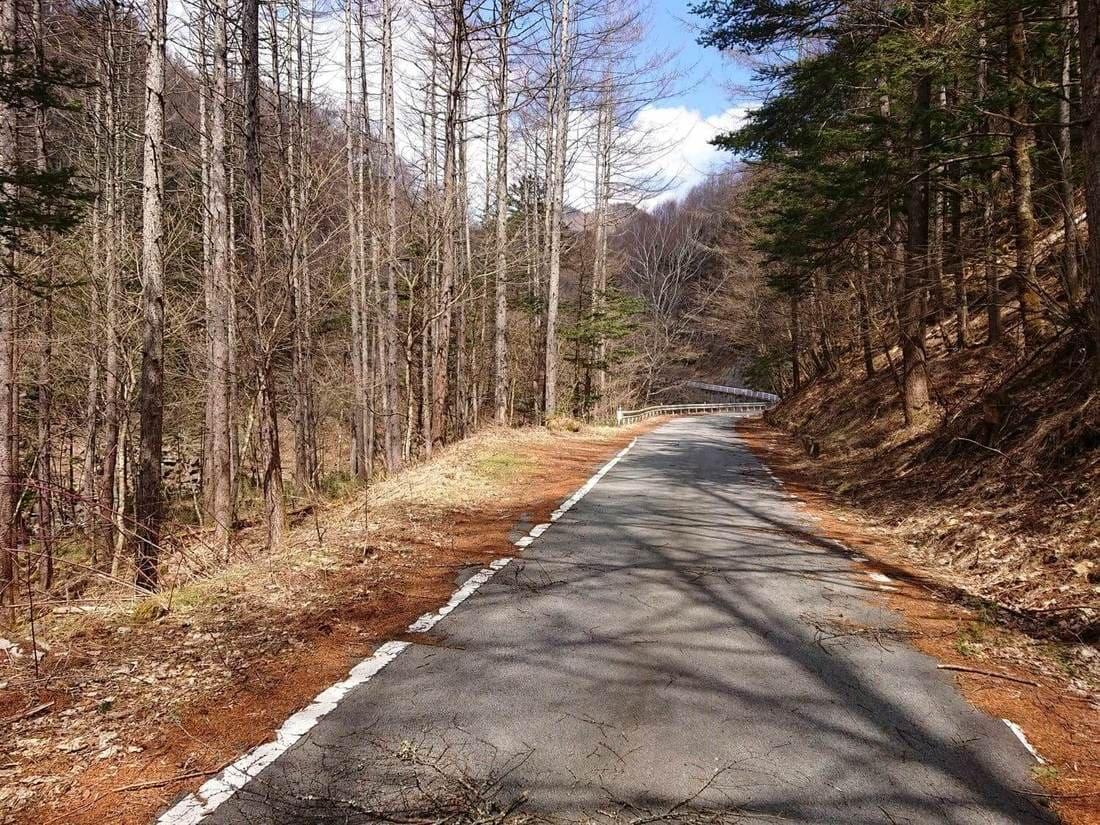 冬季閉鎖の門より先の道路