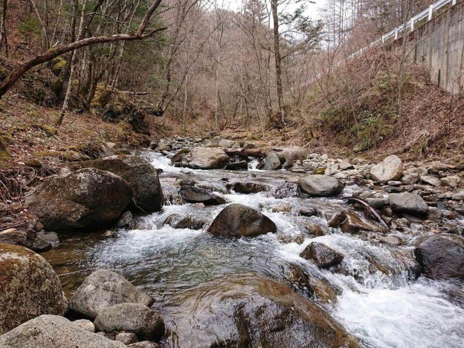琴川上流域の様子