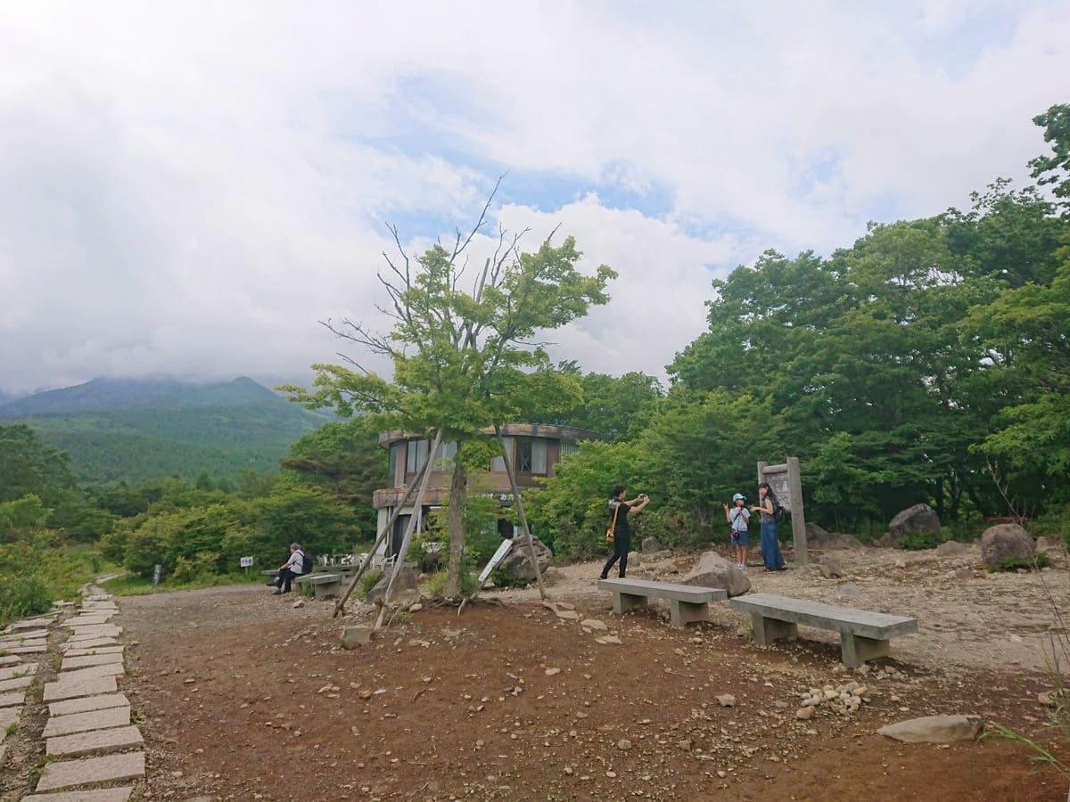 美しの森展望台と山頂の売店