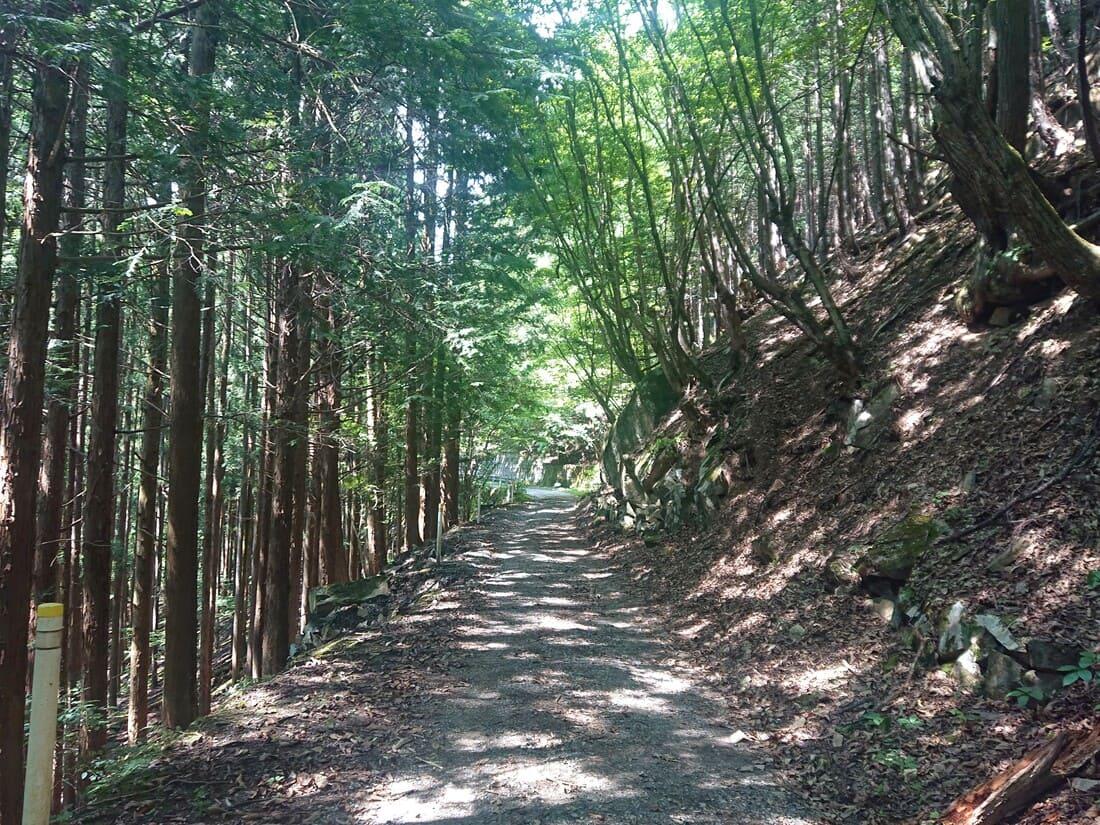 徳和渓谷入り口までの様子