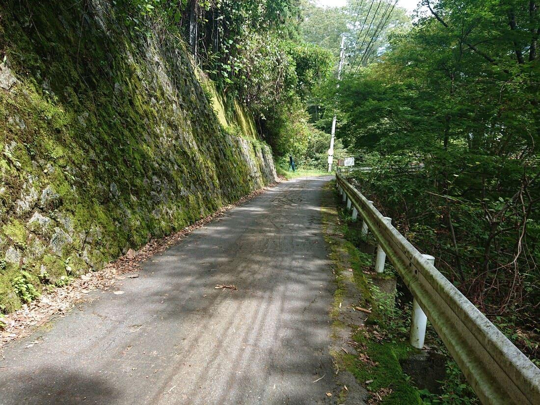 大嶽山那賀都神社駐車場までの道幅