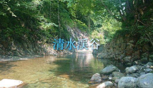 【清水渓谷:山梨市】片道徒歩7分のハイキング。一之釜の下流にある小渓谷