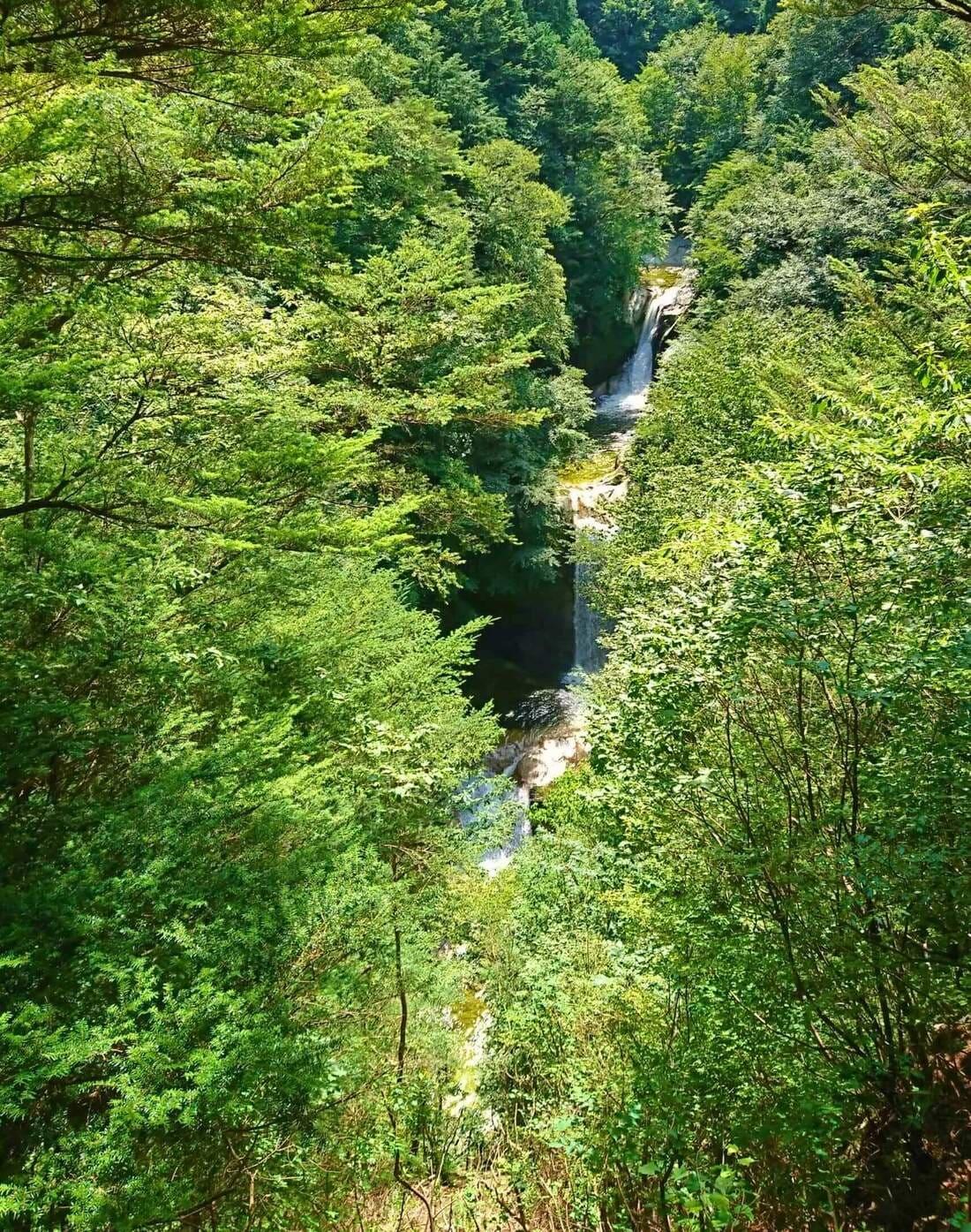 尾白川渓谷の神蛇滝