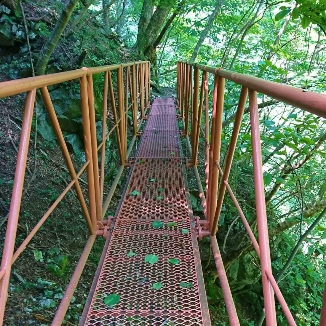 尾白川渓谷登山道の鉄橋