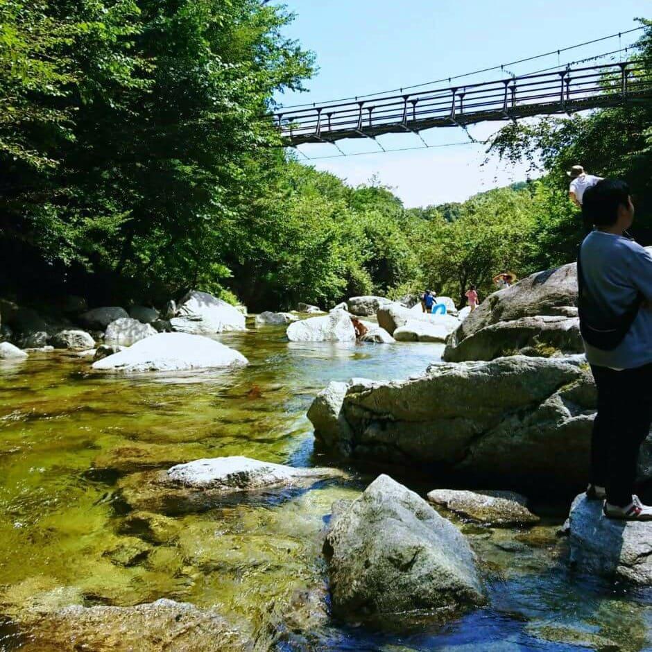 下から見た尾白川渓谷の吊り橋