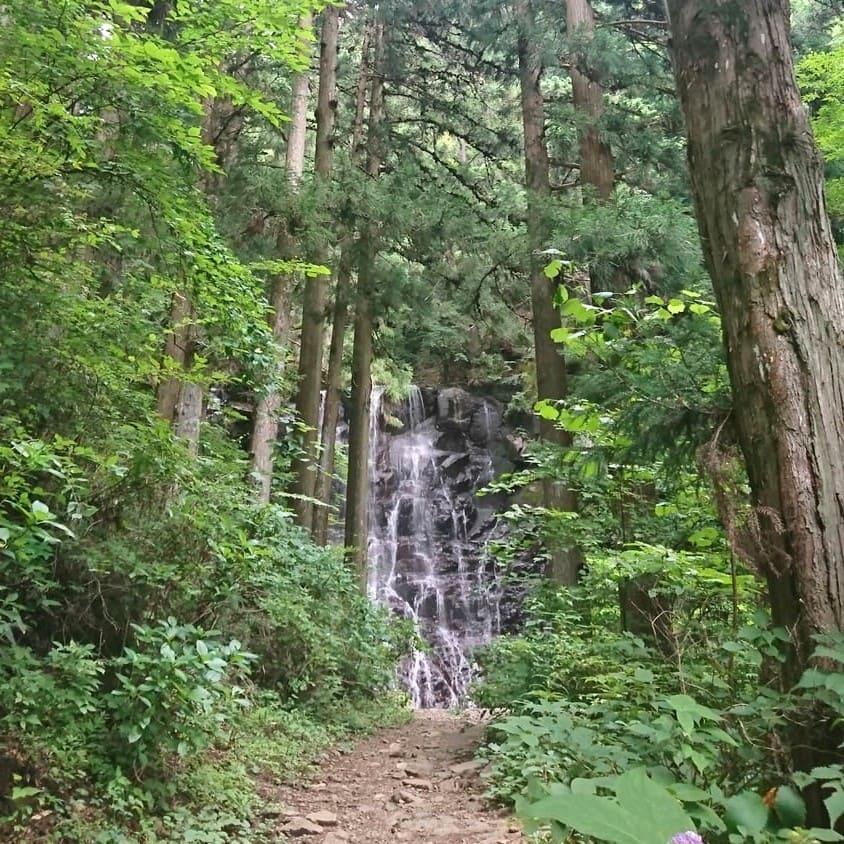母の白滝と周辺の森
