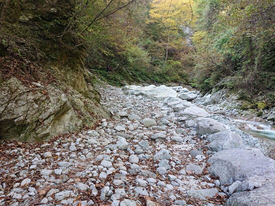 川沿いの整備された道