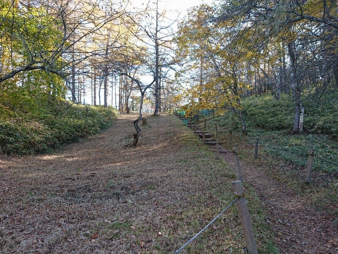 ハイキングコースの階段