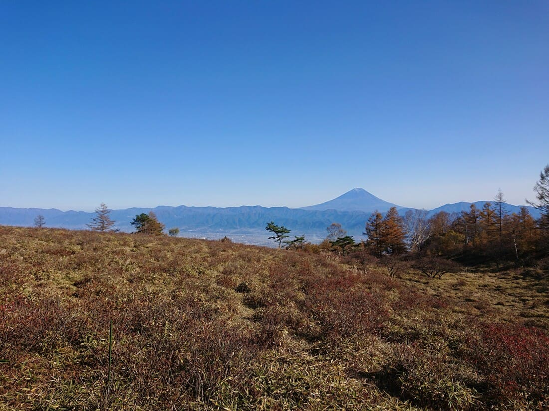 れんげつつじと富士山が一緒に見られるポイント