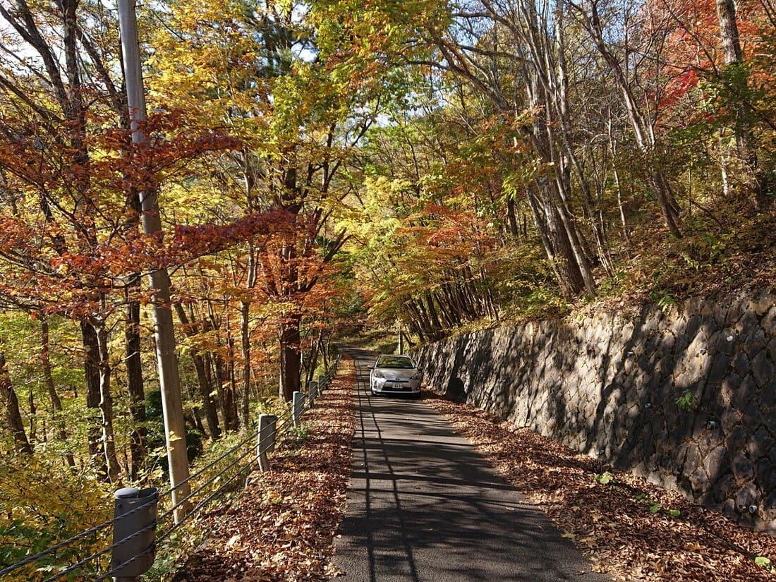 甘利山駐車場までの道で見られる紅葉
