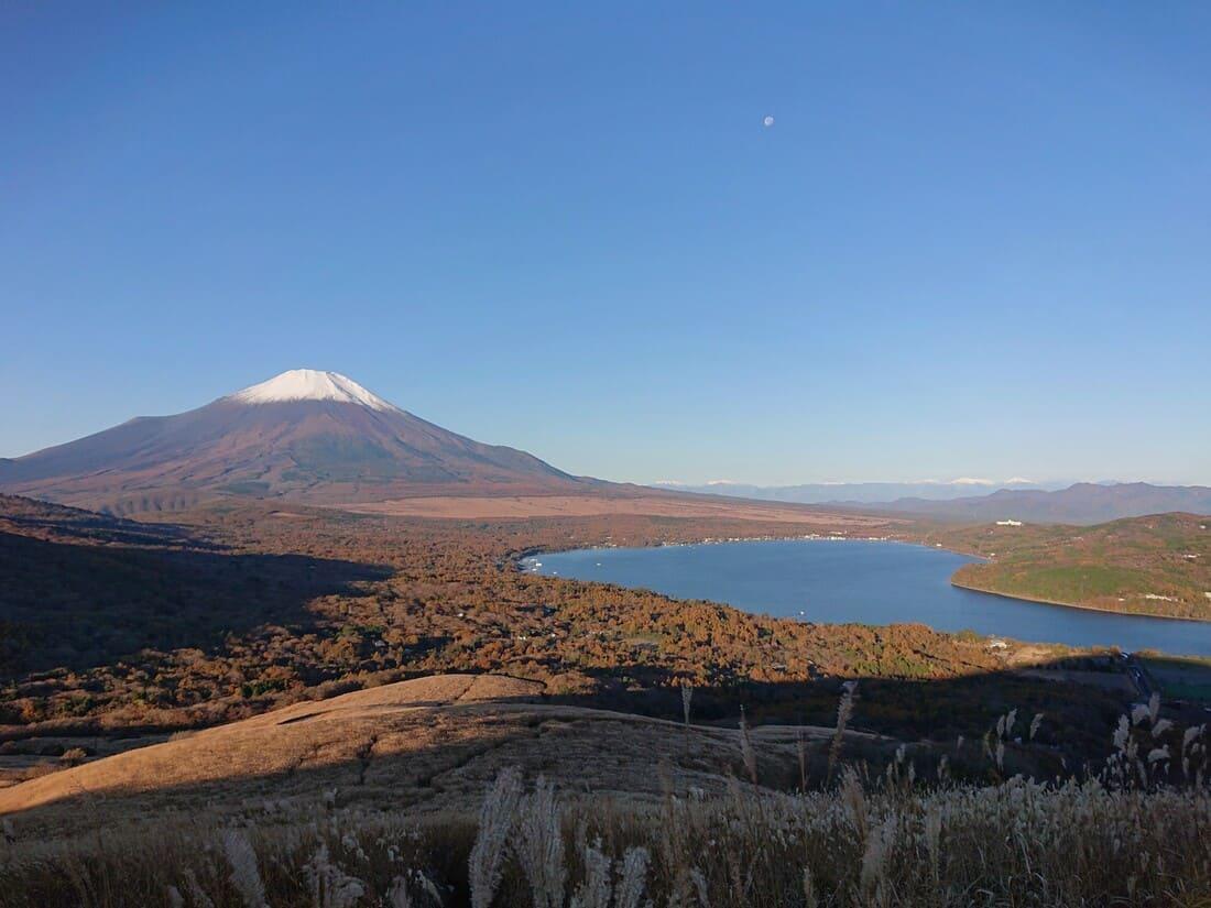 鉄砲木の頭から見た富士山と山中湖
