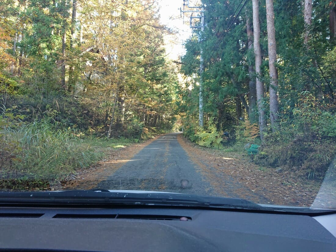 二十曲峠までの林道の道幅