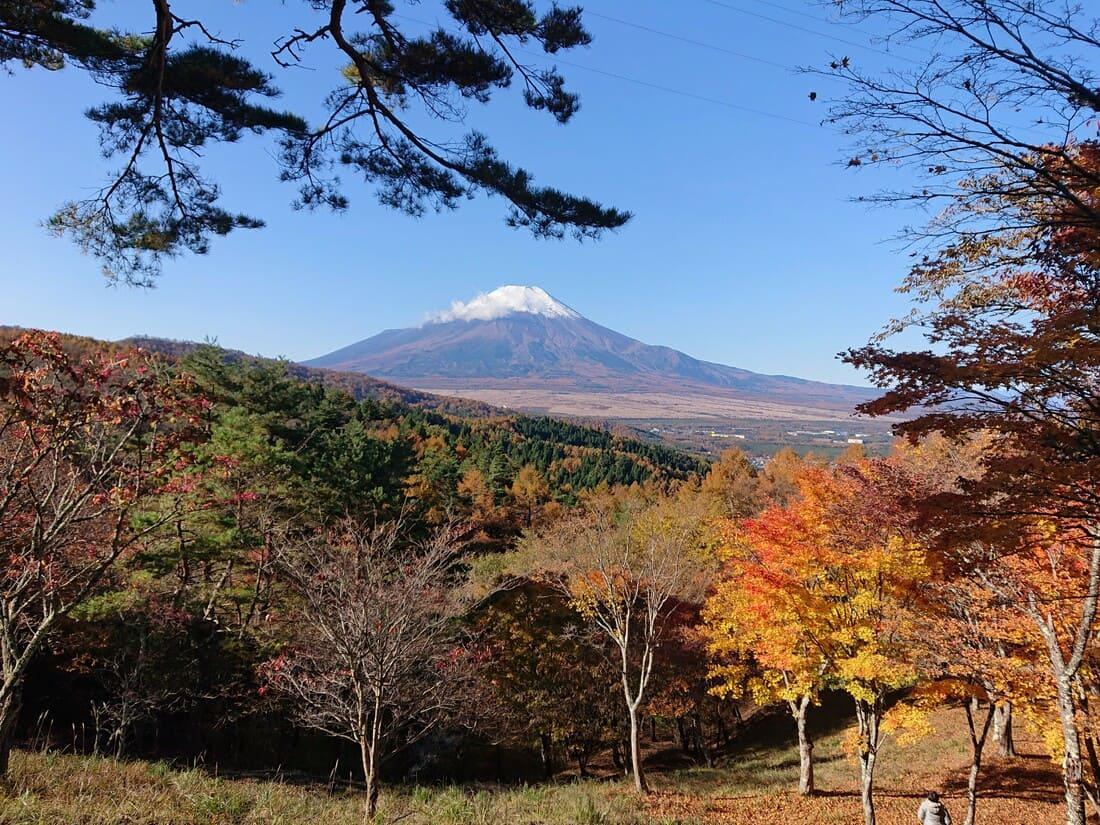 違う場所から撮影した富士山