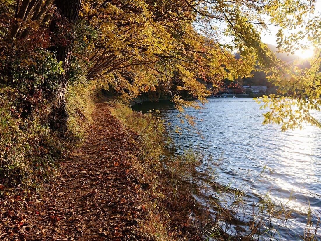 整備されていない湖畔の道