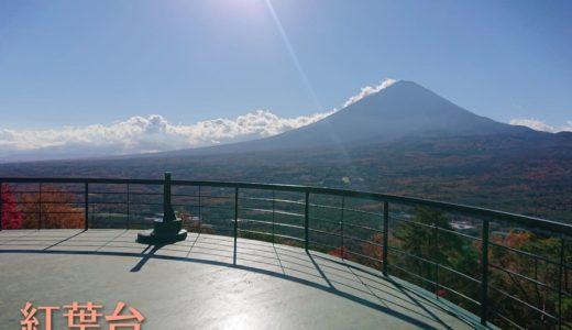 【紅葉台】頭上一面のモミジと360°の大パノラマ!存在感バツグンの富士山とあたりの紅葉を一望しよう!